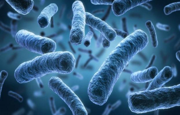 BiFiPro. An innovative technology for Legionella prevention